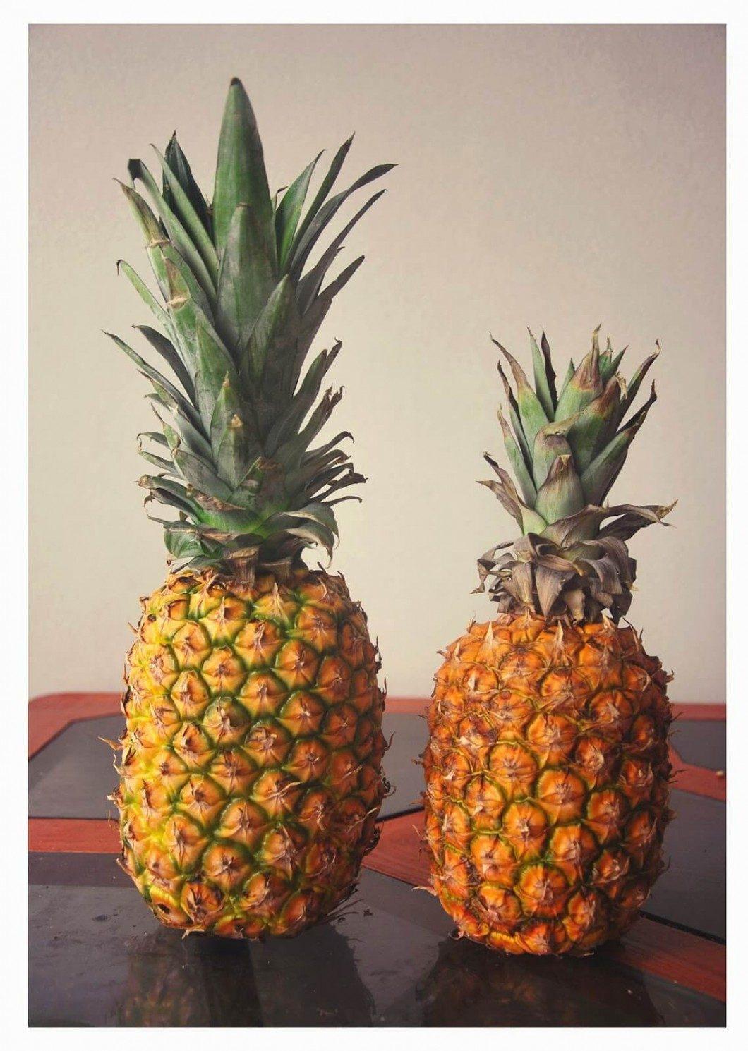 zrelé ovocie