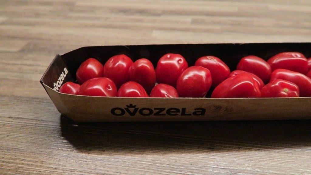 ovozela